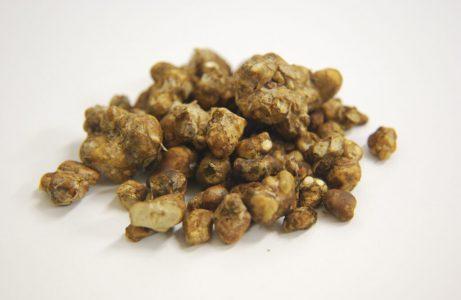 Heroic dose magic mushroom ceremony